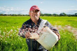 Comment devenir agriculteur bio ?