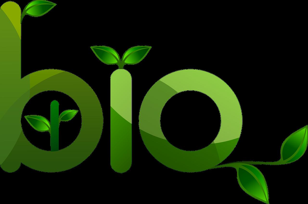 La création de produits bio est-il un métier facile et qui rapporte?