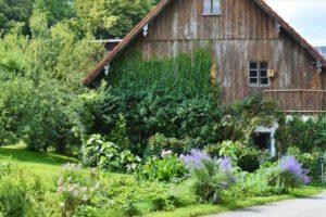 Devenir constructeur de maisons en bois